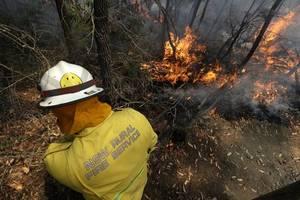 bushfires surround sydney as australia's nsw state declares emergency
