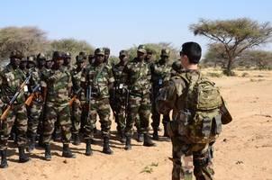 takfiri terrorists kill 14 troops in ambush in western niger