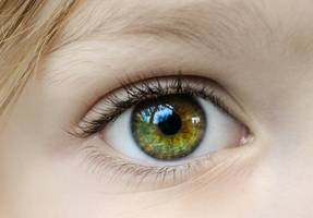 scientists succeeded in solving eye diseases