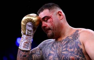 evander holyfield touts andy ruiz jr to become heavyweight champion again