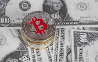 """elon musk teases the bitcoin (btc) community: """"not my safe word!"""""""