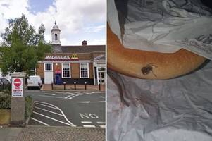 hungry mcdonald's customer 'finds spider on cheeseburger'