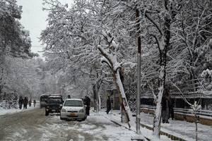 severe weather in afghanistan, pakistan leaves 43 dead