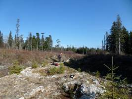 great atlantic identifies additional gold anomalies on the golden promise gold property also announces financing newfoundland