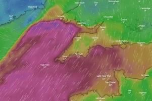 Met Office wind warning now in force as Storm Brendan blasts Devon and Cornwall - live updates