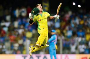 whacked at wankhede! australia beat india comprehensively by 10 wickets and 74 balls to spare