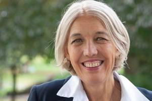 liberal democrats pick business leader and academic beverley nielsen for west midlands mayor candidate