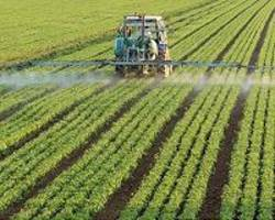 aged, recycled urine may be safe alternative to traditional fertilizer