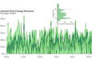 nasa forest structure mission releases first data