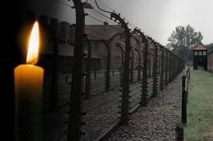 remembering the holocaust - how to talk to your child about what happened