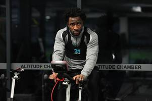 sheffield wednesday, rangers and celtic - the clubs tipped to sign ex-swansea city striker wilfried bony