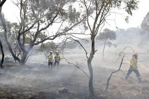 bushfire smoke blows into australia's capital as fire threat eases