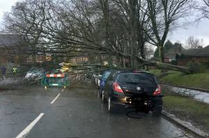 'only call us if a life is in danger' - 999 services' plea to public over storm ciara havoc