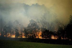 'All bushfires in hardest-hit Australia state now contained'