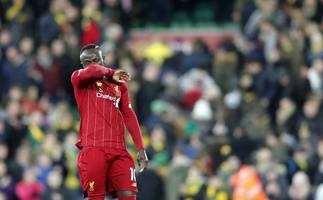 norwich city 0-1 liverpool: reds' march on thanks to magnificent mane