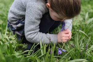 princess charlotte smells bluebell in adorable photo as kate middleton urges children to go outside