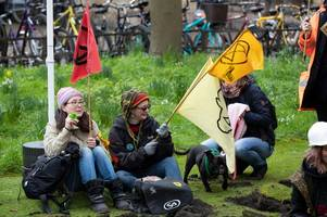 before and after photos show ridiculous extinction rebellion damage to historic trinity college lawn