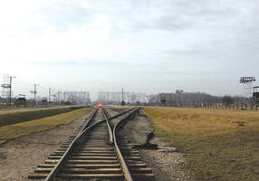 walking with survivors on 75th anniversary of the liberation of auschwitz