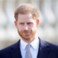 royal family website links to porn site instead of harry's charity