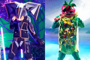 'the masked singer': why the elephant turned down the taco costume