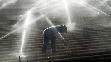 trump signs order to divert california water