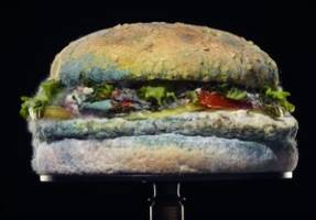 Burger King Features A Rotting Whopper in Bizarre Ad Campaign