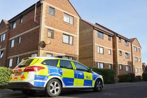 murder 24/7: life inside the southend-on-sea roots hall drive flats where courtney valentine-brown murdered