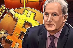 bitcoin 'suckers' are wrong about safe haven status — peter schiff