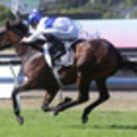 racing: barrier four just catalyst for a guineas win