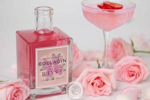 new 'collagin' anti-ageing gin is the perfect drink for beauty conscious tipple-lovers