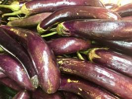 iranian police arrest five over prank aubergine-rain video