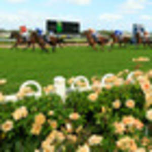 racing: kiwis pipped in a$1m race