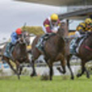 racing: australian plans remain fluid for probabeel