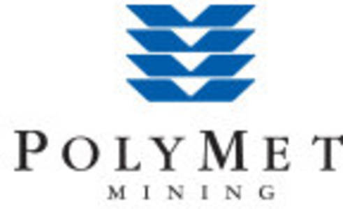 polymet reports results for year ended december 31, 2019
