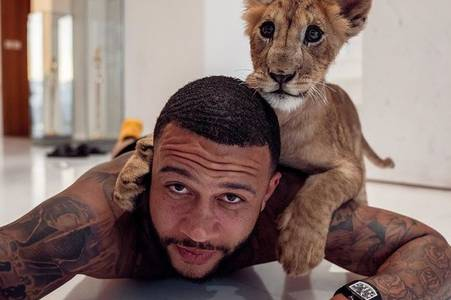 man utd flop memphis depay channels inner tiger king in home photo with liger