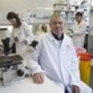 coronavirus covid 19: top nz scientist buoyed at vaccine race
