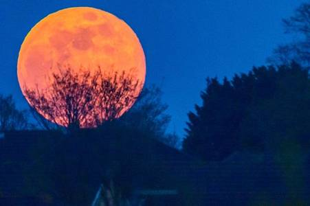 Pink supermoon updates as lunar treat expected