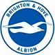 Championship: Brighton & Hove Albion News