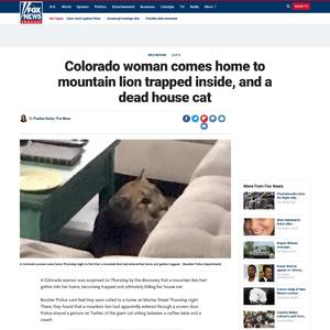 Colorado woman comes home to mountain lion trapped inside, and a dead house cat